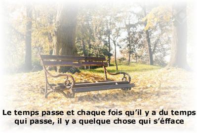 85156814 banc vide dans le parc couvert de feuilles mortes scene d amp automne 1