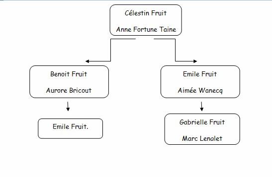 Emile fruit mplf 1