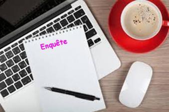Enquete blog