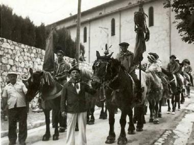 Photo chevaux st eloi