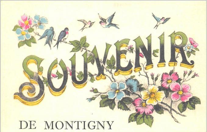 Souvenir de montigny